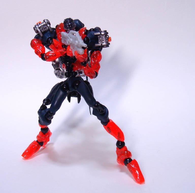 muscle_fiber_baesd_ucx1.jpg